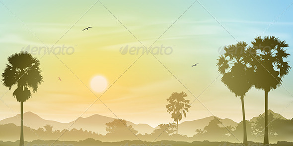 Palm Tree Landscape - Landscapes Nature