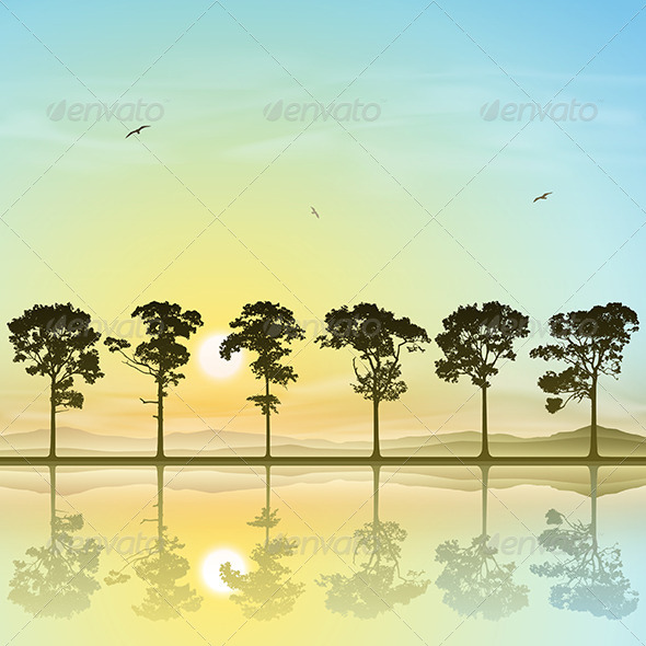 A Line of Trees - Landscapes Nature