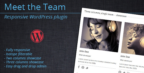 Meet the Team - WordPress Plugin - CodeCanyon Item for Sale