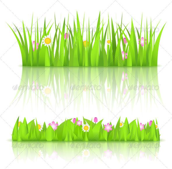 Grass - Landscapes Nature