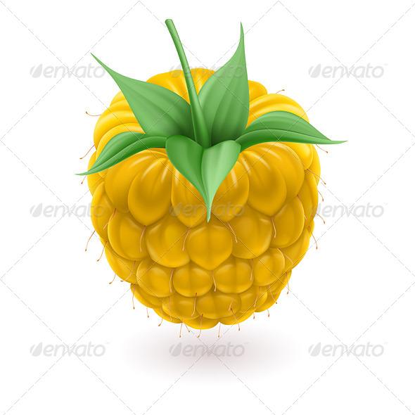 Yellow Raspberries - Nature Conceptual