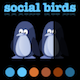 Social Birds Vector Infographic - GraphicRiver Item for Sale