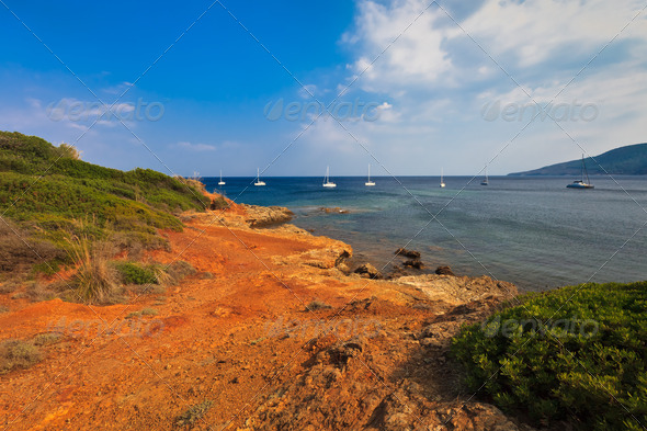 coast on Elba Island  - Stock Photo - Images