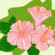 Set of Colored Hibiscus - GraphicRiver Item for Sale
