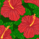 Seamless Pattern with Hibiscus  - GraphicRiver Item for Sale
