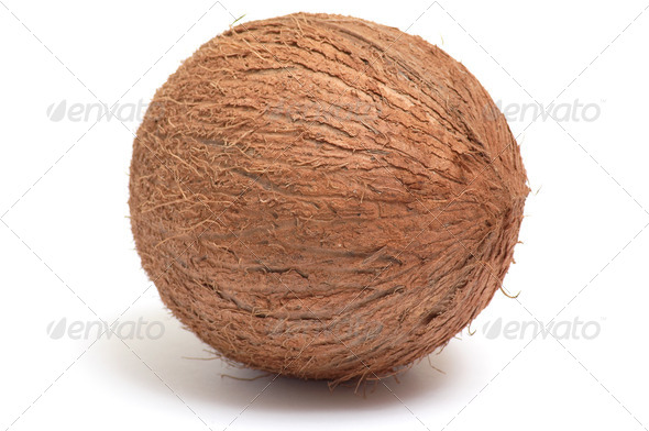 One  coconut on a white background. - Stock Photo - Images