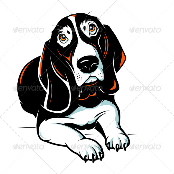 Basset Hound Dog - Animals Characters