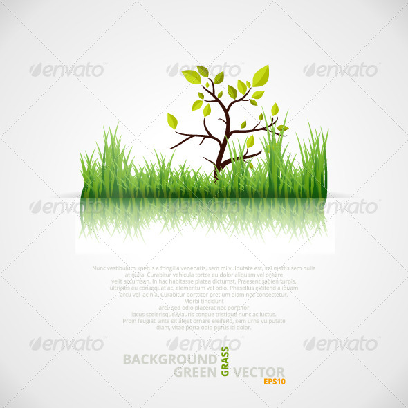 Vector Background with Green Grass and Tree - Nature Conceptual