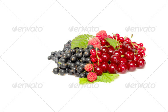 Tasty ,mixed berries on a white. - Stock Photo - Images