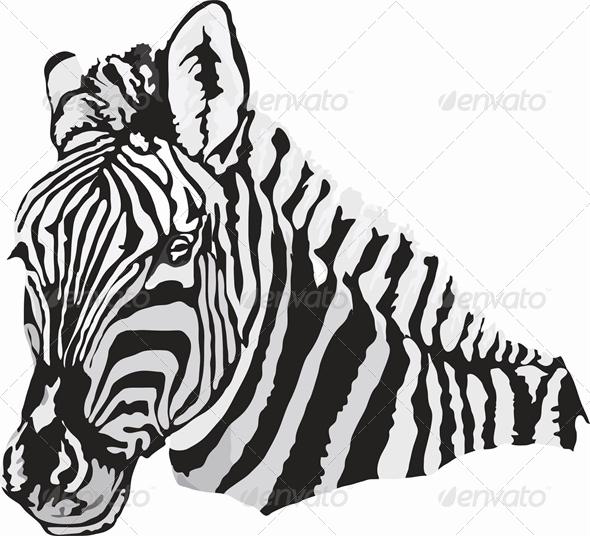 Zebra - Animals Characters