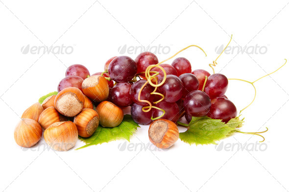 Ripe hazelnuts and juicy grapes on a white. - Stock Photo - Images