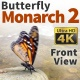 Butterfly Monarch 2 - VideoHive Item for Sale