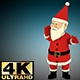 Fan Santa Sport - VideoHive Item for Sale