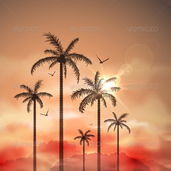 Tropical Landscape with Palm Trees - Landscapes Nature