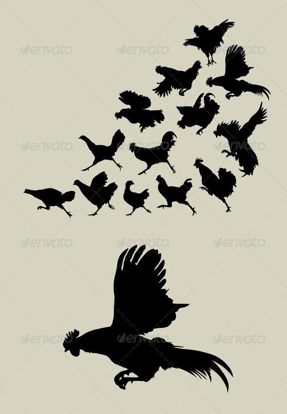 Chicken or Rooster Running Silhouettes - Animals Characters