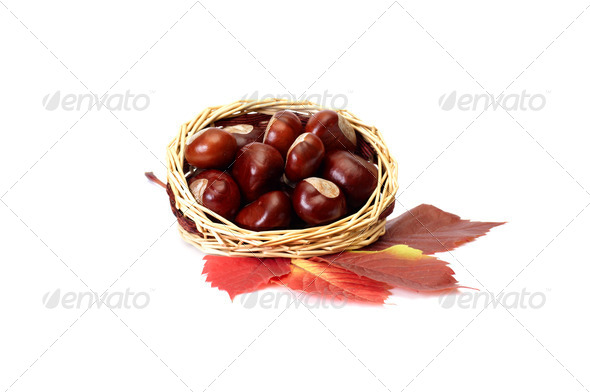 Autumn picture of leaves and chestnuts. - Stock Photo - Images