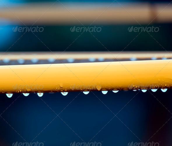 Rain Drops - Stock Photo - Images