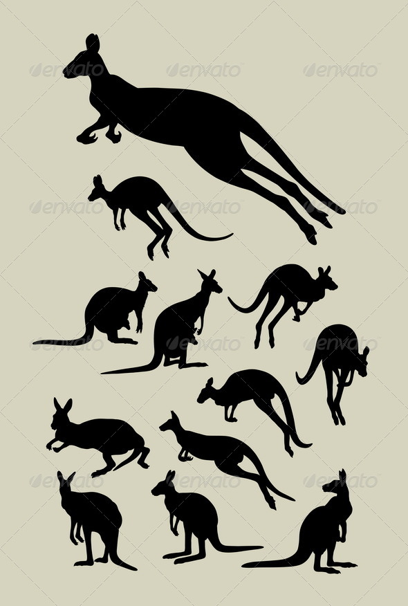Kangaroo Silhouettes - Animals Characters