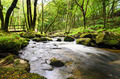 Golitha Falls in Cornwall - PhotoDune Item for Sale