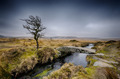 Winter on Dartmoor - PhotoDune Item for Sale