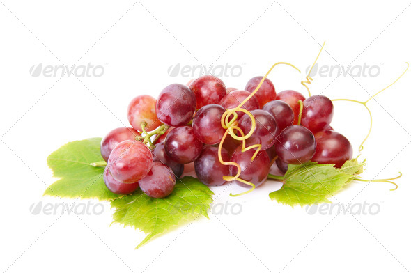 Tasty,ripe grape on a white. - Stock Photo - Images