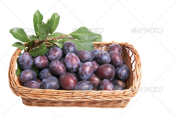 Juicy plums  in the basket. - Stock Photo - Images