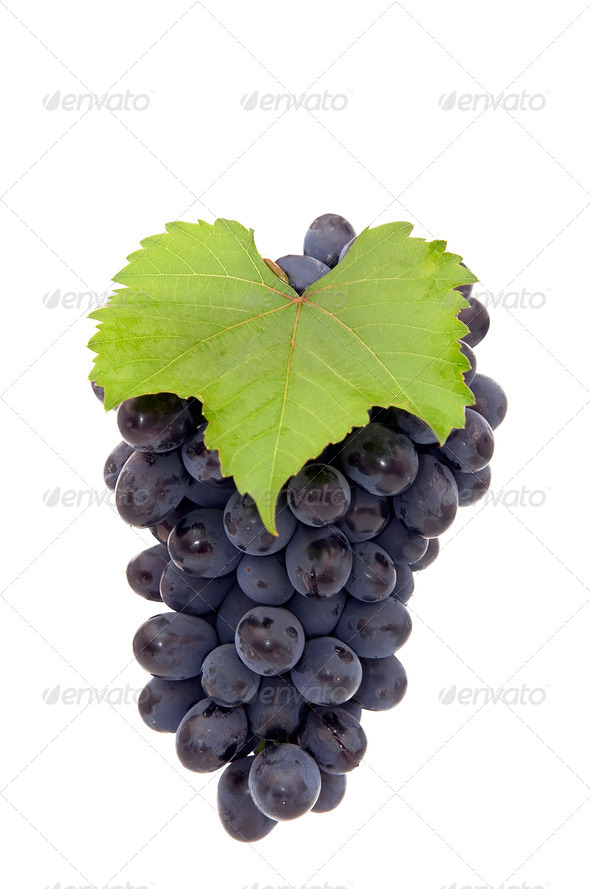 Bunch of grape. - Stock Photo - Images