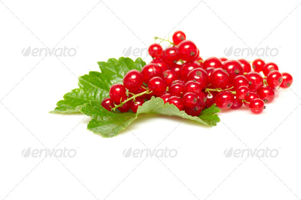 Fresh red currant on a white - Stock Photo - Images