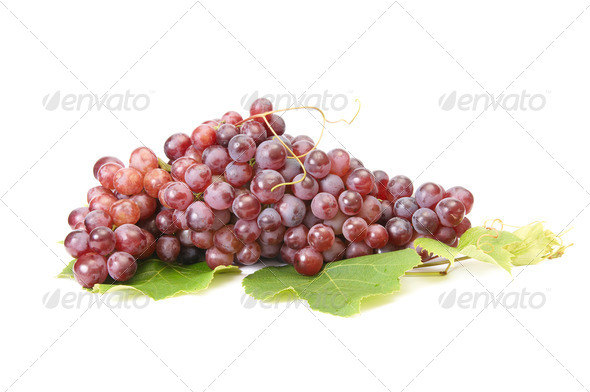 Ripe grape on a white. - Stock Photo - Images