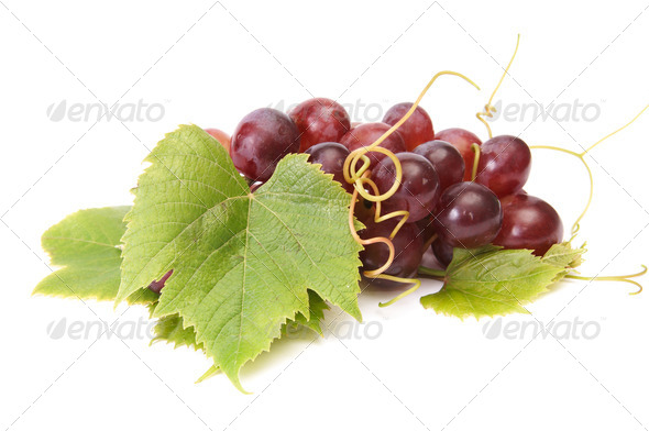 Juicy grape on a white. - Stock Photo - Images