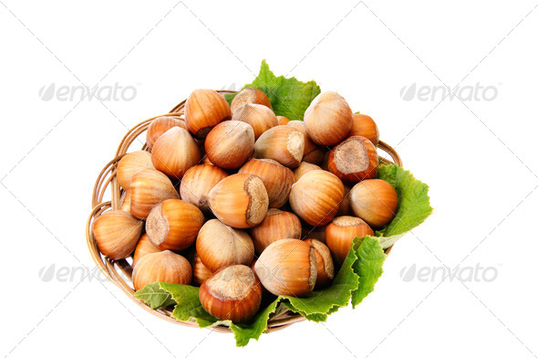 Ripe,tasty hazelnuts on a white. - Stock Photo - Images