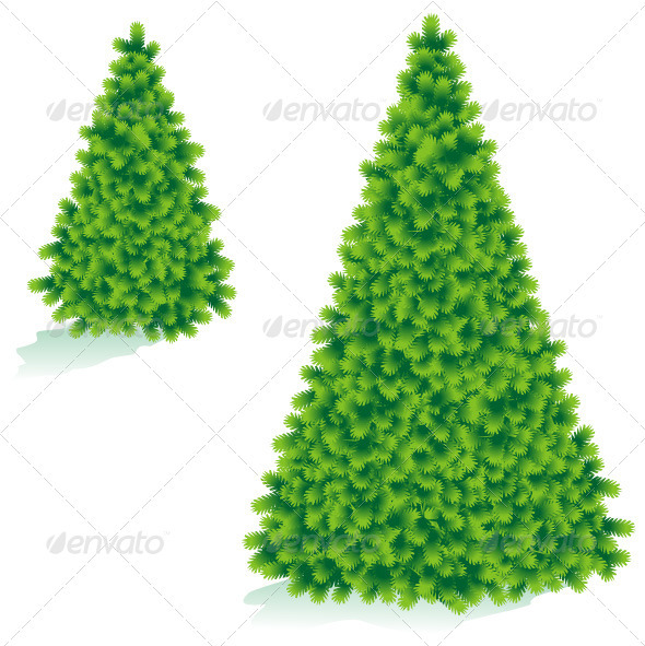 Christmas Tree of Two Sizes - Christmas Seasons/Holidays