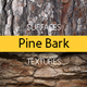 Pine Bark Surfaces Texture Backgrounds - GraphicRiver Item for Sale