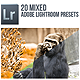 20 Mixed Lightroom Presets - GraphicRiver Item for Sale