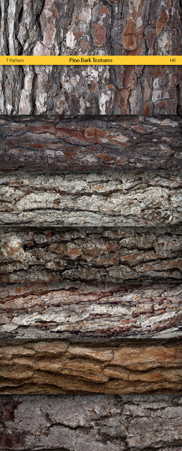 Pine Bark Surface Textures - 3DOcean Item for Sale