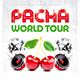 Pacha World Tour Party Flyer - GraphicRiver Item for Sale