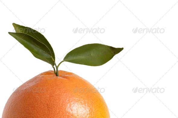 Half of orange on a white. - Stock Photo - Images