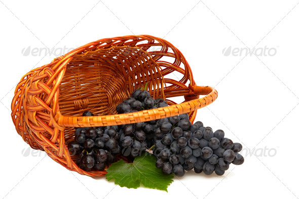 Bunches of grapes  in basket. - Stock Photo - Images