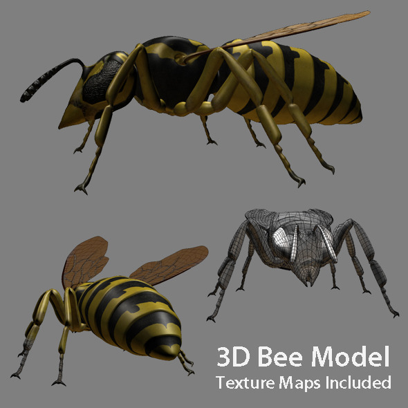 Low poly 3d model of Bee - 3DOcean Item for Sale