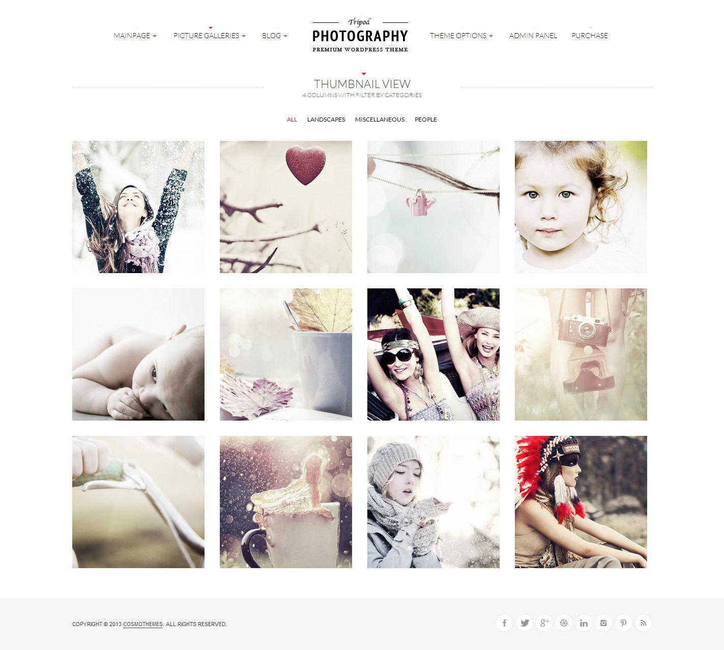 wp photography theme