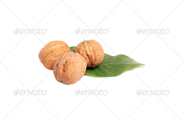 Tasty autumn walnuts on a white. - Stock Photo - Images
