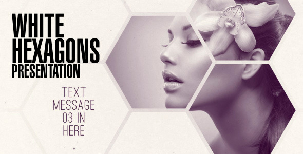 clean white hexagon presentationenchantedstudios | videohive, Presentation templates