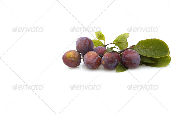 Fresh plum s on white background. - Stock Photo - Images
