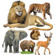 27 Animal Vectors - GraphicRiver Item for Sale