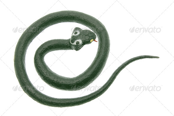 Rubber Cobra - Stock Photo - Images