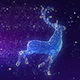 Christmas Reindeer Widescreen Background - VideoHive Item for Sale