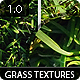 6 Clean Grass Textures 1.0 - GraphicRiver Item for Sale
