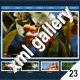 ADVANCED XML IMAGE GALLERY v27