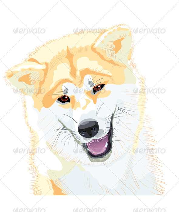 Sketch Akita Inu Japanese Dog smiles - Animals Characters