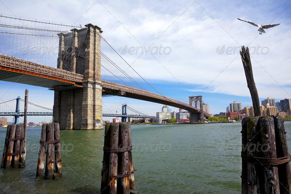 Brooklyn and Manhattan Bridges - Stock Photo - Images